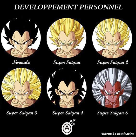 autentiks_dragonball_developpementpersonnel
