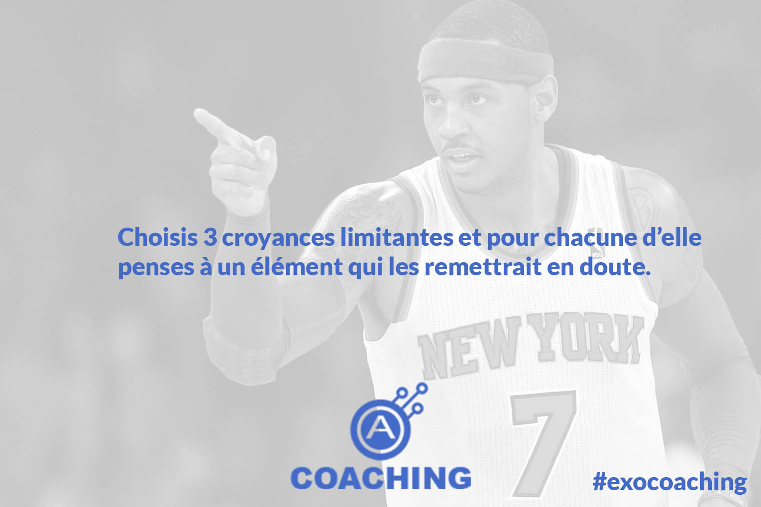autentiks_carmelo_anthony_fabrice_martin_coaching_semaine7