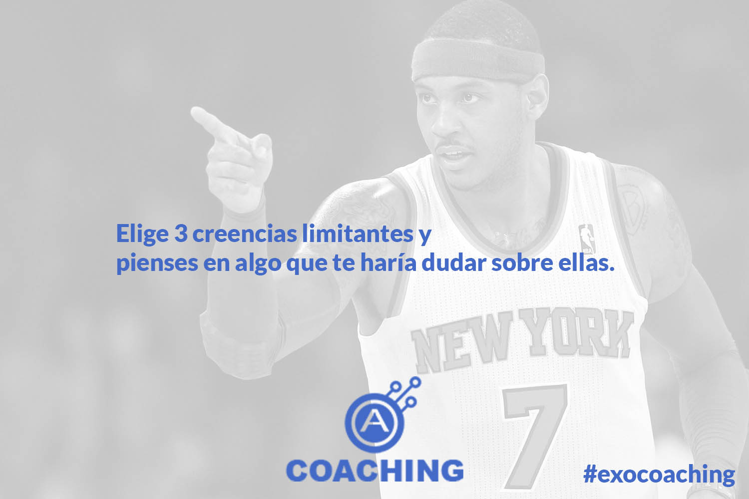 autentiks_carmelo_anthony_fabrice_martin_coaching_semana7