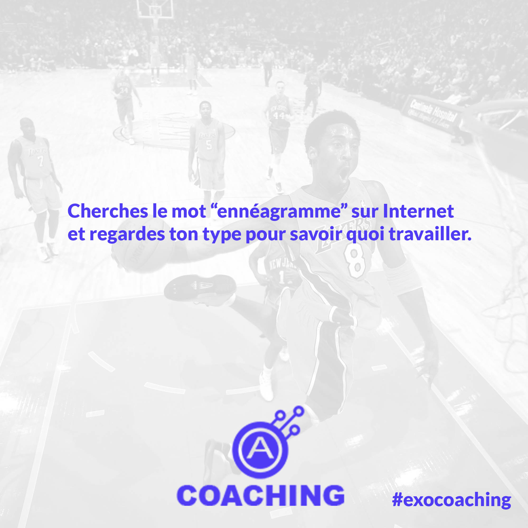Semaine 8 – Exercice de Coaching